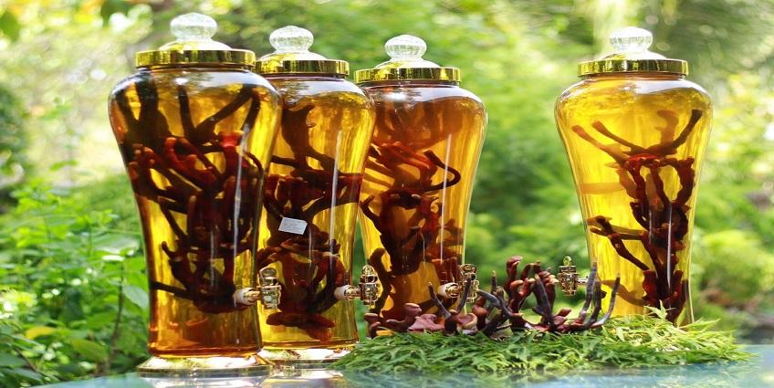 Rượu thuốc bổ khí huyết tuổi trung niên