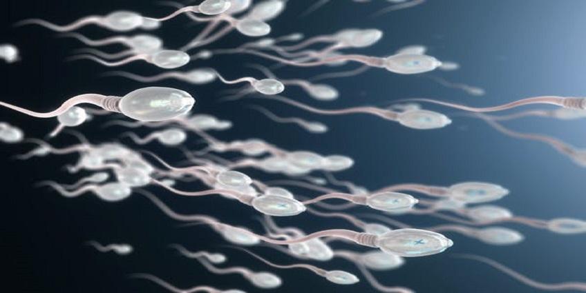 COVID-19 và vaccine COVID-19 tác động thế nào đến sức khoẻ tình dục của nam giới?
