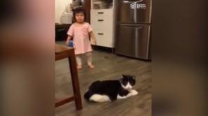 Em bé ngã lăn quay vì bị mèo ngáng chân