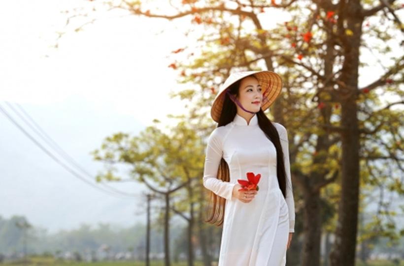 Thiếu nữ khoe sắc cùng hoa gạo đỏ