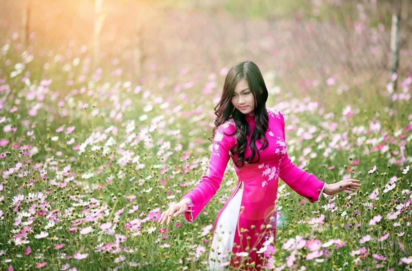 Cô gái khoe vẻ đẹp đằm thắm giữa cánh đồng hoa